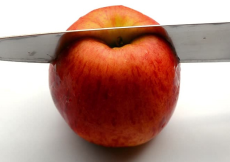 Adaptive Education with Apples